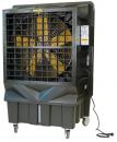 Охладитель воздуха Master BC 220 в Москве